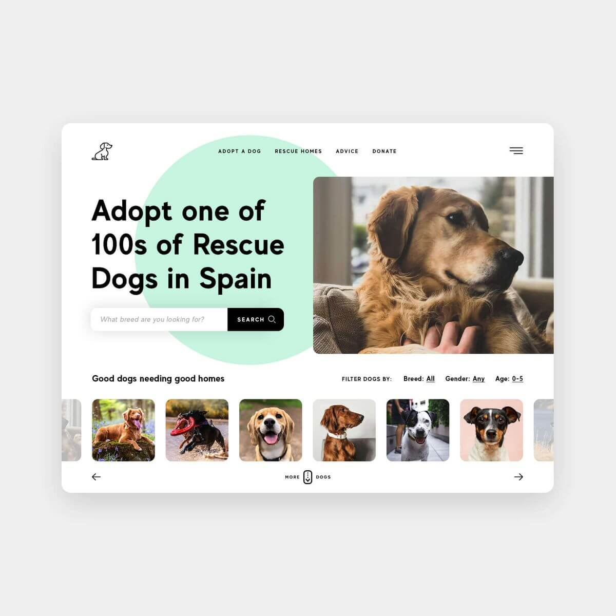 Adoptable Dog Adoption Website Platform