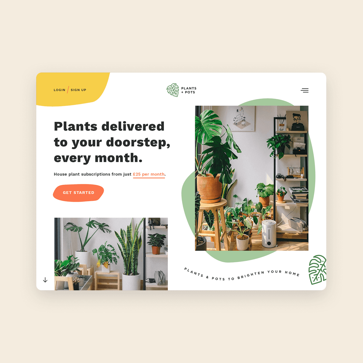 Plant Delivery Service Website Design